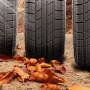 Держим высокую планку: динамика продаж шин превышает ожидания - фото 1