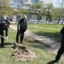 В Белой Церкви компания «РОСАВА» высадила аллеи деревьев в честь своего 45-летнего юбилея - фото 6