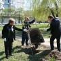 В Белой Церкви компания «РОСАВА» высадила аллеи деревьев в честь своего 45-летнего юбилея - фото 5